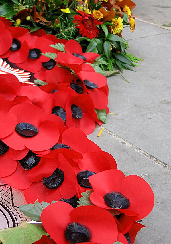 remembrancepoppies